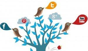 Social Media Report - Top Social Media Channels